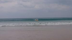 Mycket surf --> Lite bilder